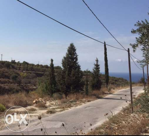 land for sale in barghoun - koura الكورة -  1