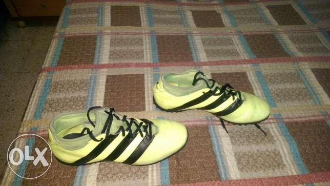 Adidas Football Shoes - ACE 16.3 Yellow PrimeMesh Turf الشياح -  7