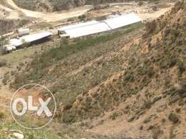 land for Sale in Twaiteh Zahle