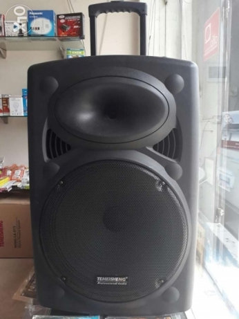 "Karaoke speaker 15"" with 2 wireless microphones"