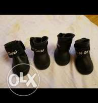 Brand new puppy shoes black color and waterproof
