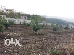 land for sale at mechref 837 m