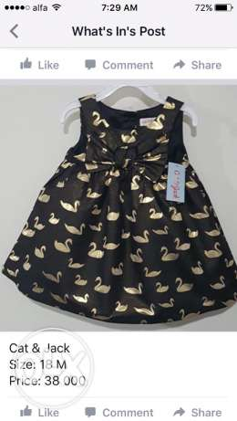 Cat&Jack dress, size: 18M