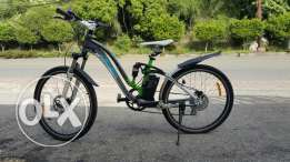 Bycicle ladies style longwise electric