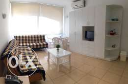 Furnished Studio - Zouk Mosbeh