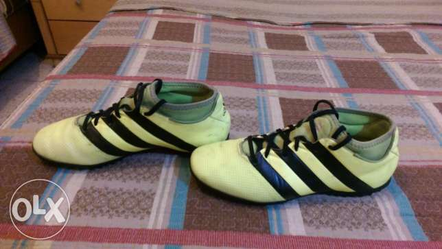 Adidas Football Shoes - ACE 16.3 Yellow PrimeMesh Turf الشياح -  2