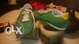 Lacoste shoes green size 44