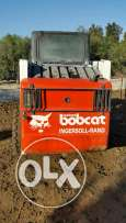 Bobcat very clean