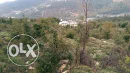 Industrial land for sale in hsoun naher ibrahim
