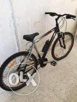 Badger and Peugeot bicycles for sale