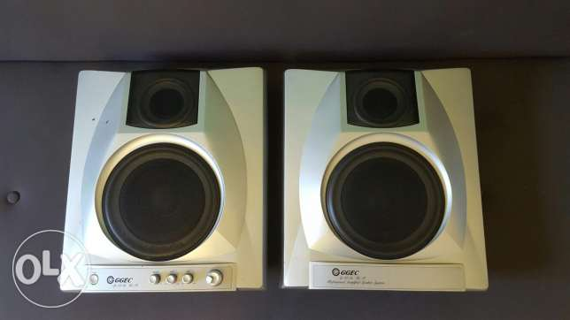 Slim power amplified speaker system
