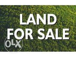 land for sale in bachoura downtown
