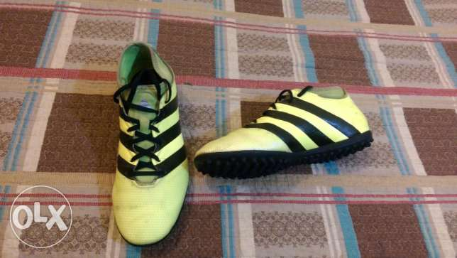 Adidas Football Shoes - ACE 16.3 Yellow PrimeMesh Turf الشياح -  5
