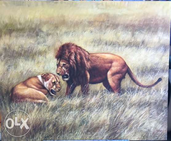 Lion Mating Call Oil Painting For Sale At A Great Price.