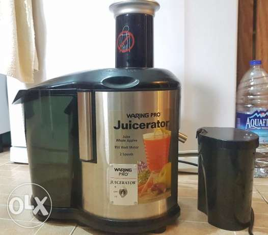 Heavy duty fruit and vegetable juicer - juices whole apples