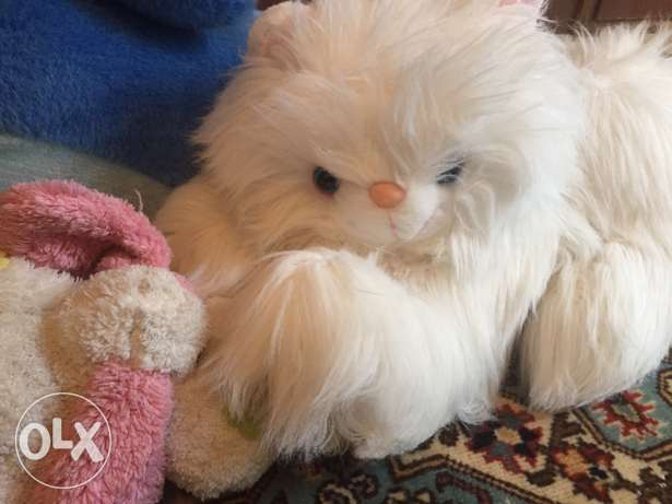 Peluche for sale