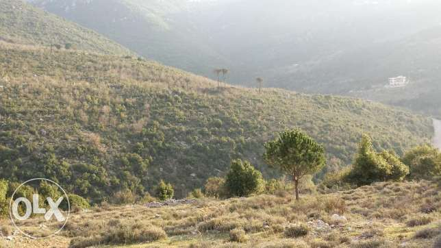 Land in bzebdine for sale or rent