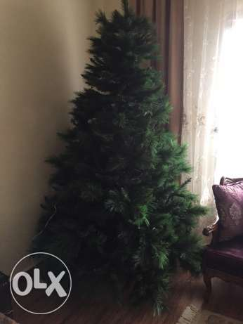 Christmas tree 240 cm