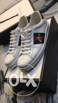 Gucci shoes from Dubai Mall (worn once only)