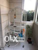 Parrot Cage for sale with it stuff