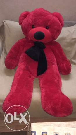 special valentine gift red teddy bear