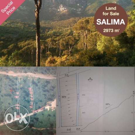 Salima 2973sqm for sale