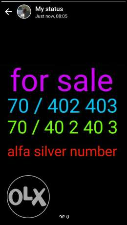 Silver Phone number