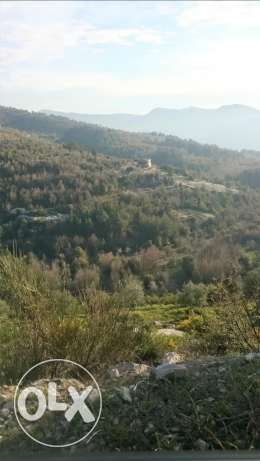 24000 sqm land in hardine-batroun uncovered