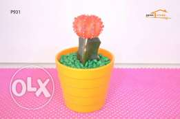 cactus - green with orange head