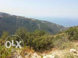Land in Mdamit, Blat / Jbeil for sale