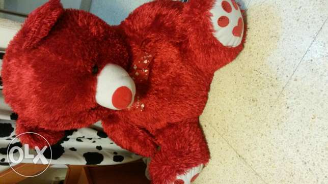 Red teady bear for valentine, Peluche rouge