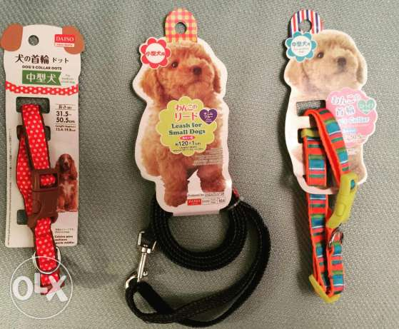 Leashes for dogs