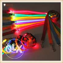 leash LED