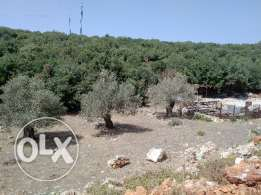 Land for sale 905 m2